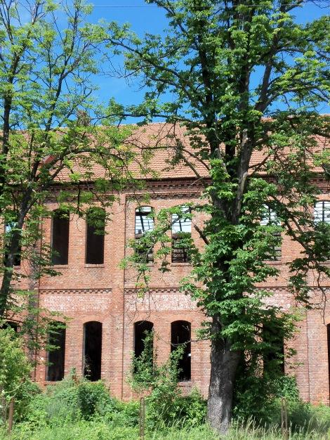 Fabrica de Otet Margina 1912, Timis 005