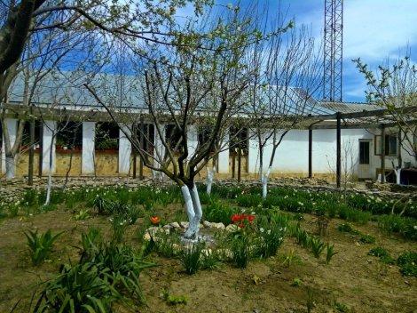 mănăstirea_histria_-_sfântul_ilie_2