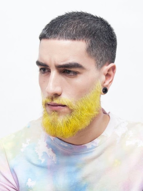 barba galbena